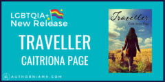 New Release: Traveller by Caitríona Page